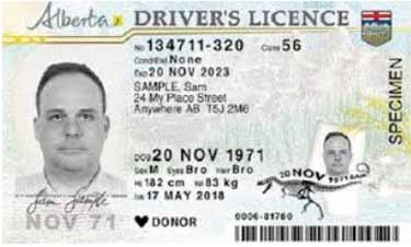 Alberta Drivers License Renewal