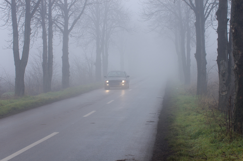 cars driving on rural road in fog