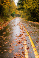 Driving Tips For Slippery Fall Roads