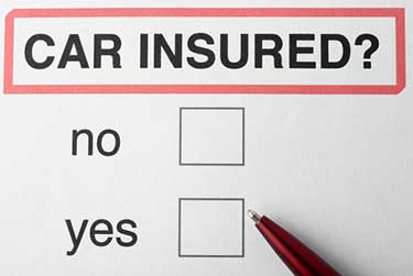 Car insured with yes or no check boxes and pen