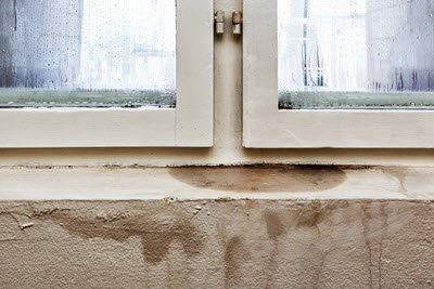 Symptoms Of Mold In Home